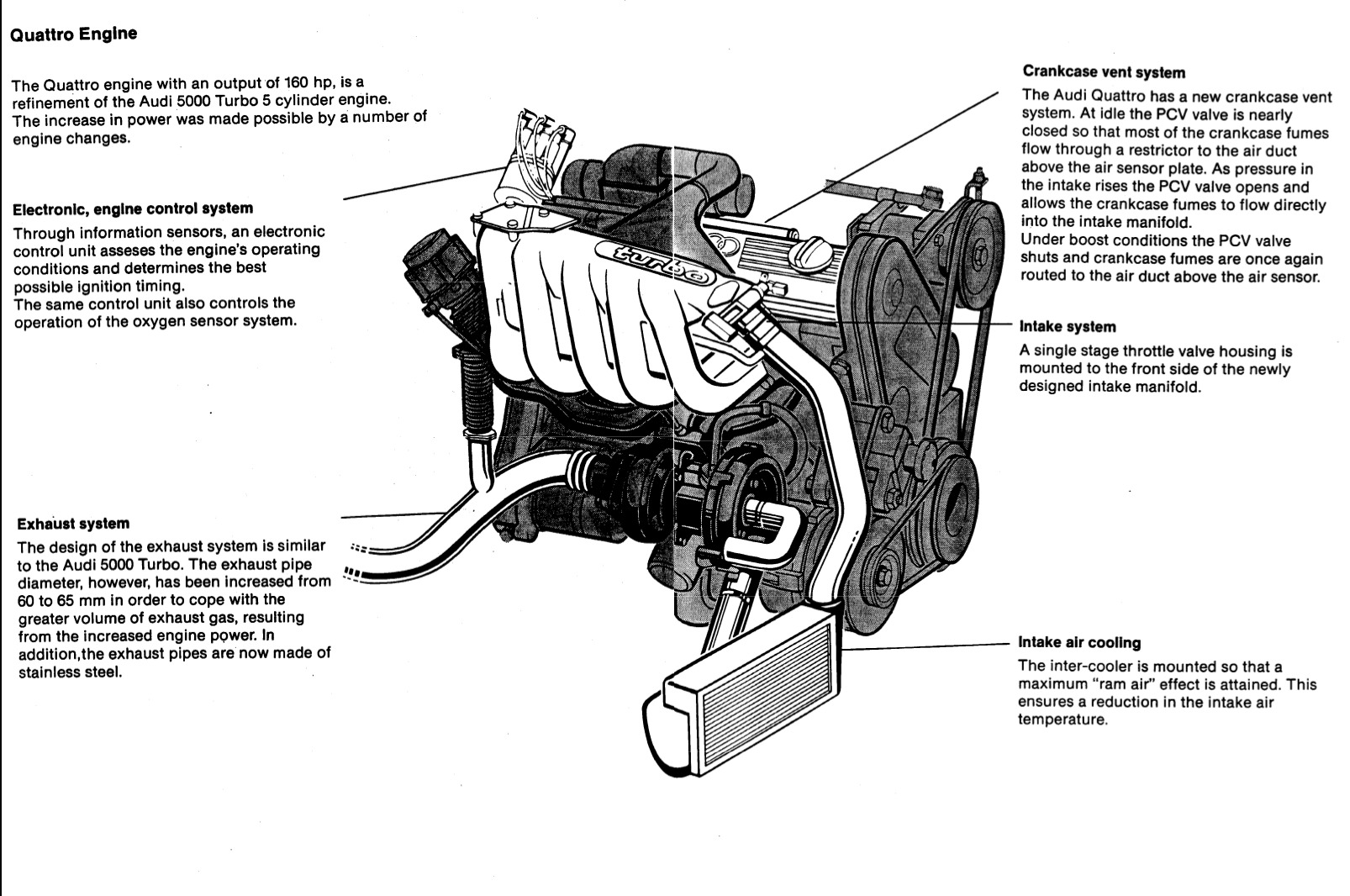 1999 Jetta Vr6 Engine Diagram Wiring Library Honda Reflex 2006 Audi S4 Harness Imageresizertool Com 2002 Vw Headlights